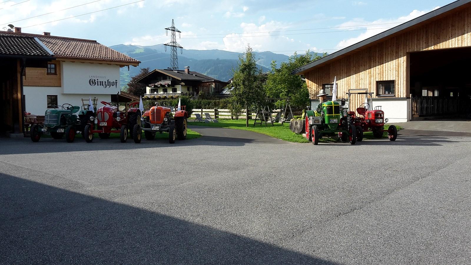 wunderschön aufgestellt die Oldtimer Traktoren
